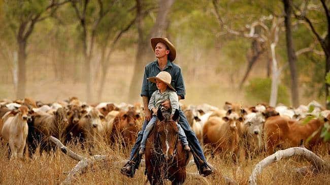 Le farm in Australia - Vado a vivere in Australia